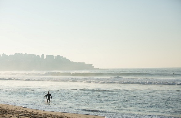 surfer bondi morning
