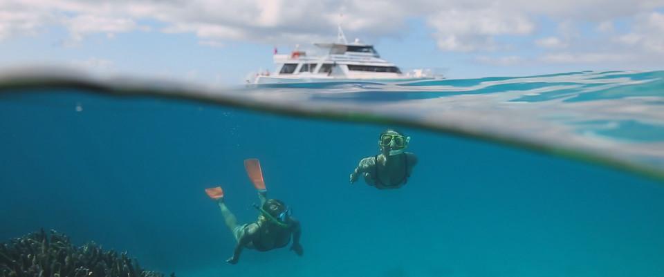 scuba diving great barrier reefqueensland