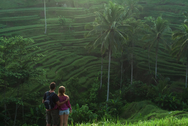 a couple looking over the rice fields in Ubud