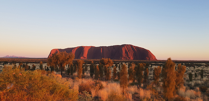 Uluru at sunrise. Image: Dani Luck