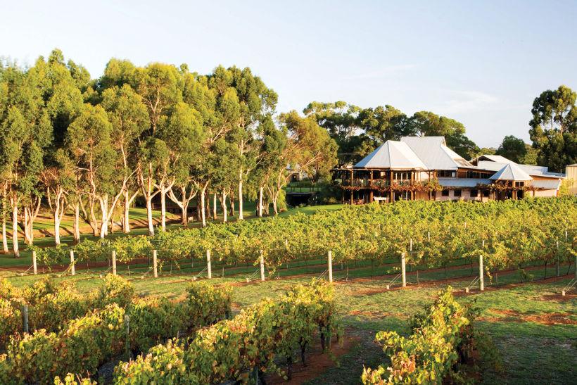 vasse-felix winery margaret river western australia