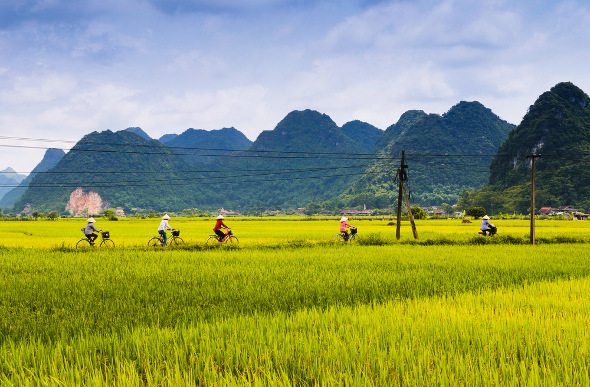 Cycling Vietnam – A Two-Week Itinerary | Flight Centre