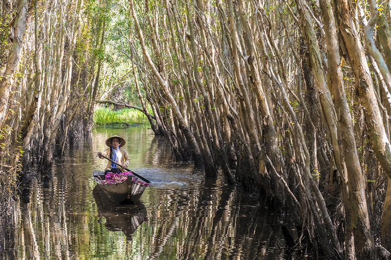 woman rows boat through mekong delta canal
