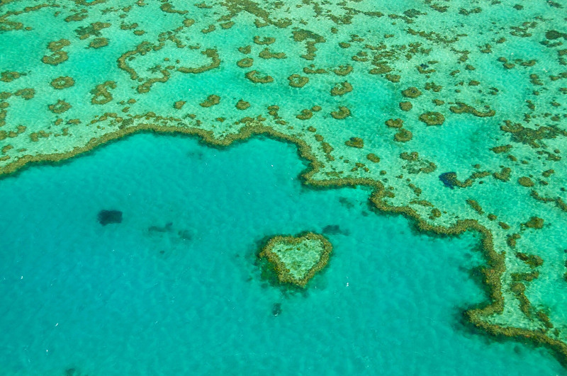 An aerial view of Heart Reef on the Great Barrier Reef in the Whitsundays.