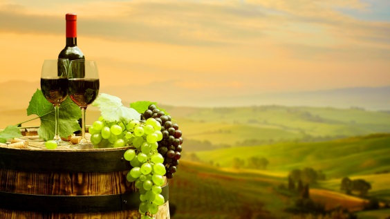 Wine Tours of Italy