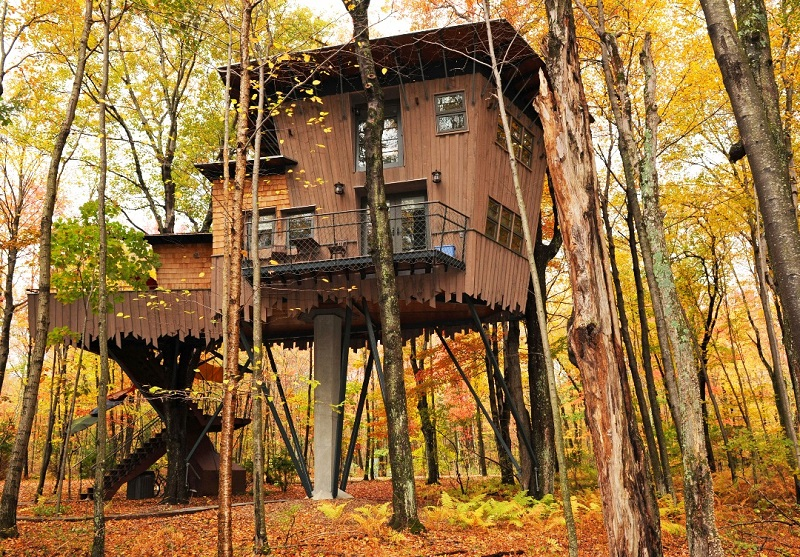 Your own personal cabin high up in the trees. Photo: Winvian Tree House.