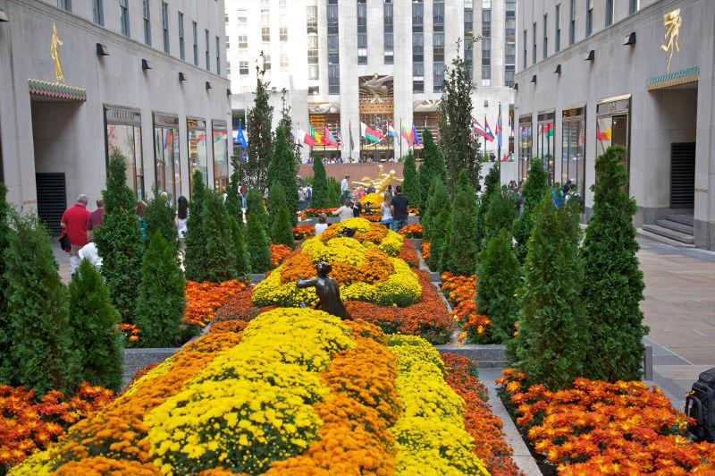 The Rockefeller Center Channel Gardens in New York City, USA.