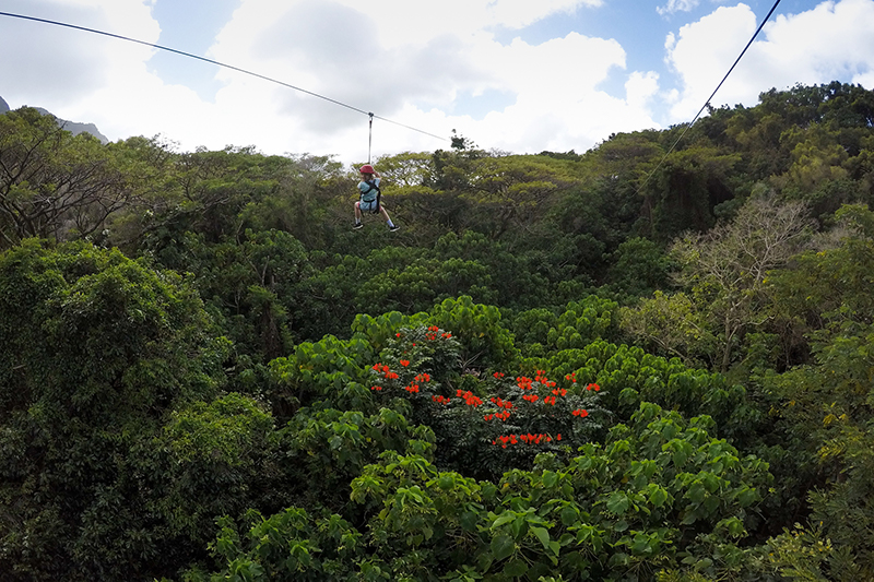 Zip-lining over the trees in Kauai