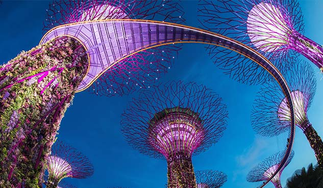Supertree in Gardens by the Bay
